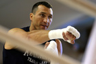 Wladimir Klitschko sats Joseph will have a 'great challenge' in the ring. Photo / Getty Images