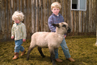 The lifestyle children get on the farm is far from what's considered normal for city kids.