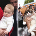 Prince George has got the Grumpy Cat look down. Photo / Getty Images, AP