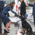 The Duchess of Cambridge pats a police dog during their visit to the Royal New Zealand Police College at Porirua on day ten of their tour of New Zealand. Photo / Mark Mitchell