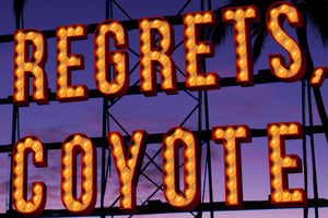 'No Regrets, Coyote' by John Dufresne.