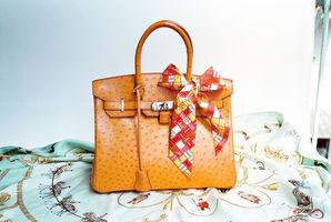 Hermes Ostrich Birkin Bag. Photo / Wikipedia-Wen-Cheng Liu