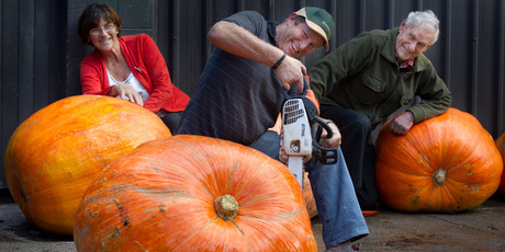 Giant pumpkin winner Mark Dibley (foreground) makes short work of slicing up his prized monster. Mark's wife Sophie (left) and father Eddie took second and fourth place respectively. Photo/Stephen Parker