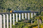 The Northern Explorer crosses the Hapuawhenua Viaduct.