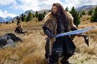 The promotion of NZ in association with the Hobbit movies is proving to be a hit in Germany.