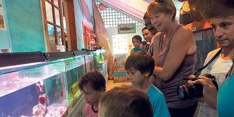Young and old alike enjoy the exhibits on display at the wildlife centre.