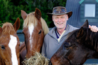 Mike Mills with his horses on his lifestyle block in Whakamarama. PHOTO/GEORGE NOVAK