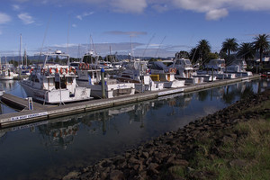 The Whitianga marina, where the young boy tragically drowned. File photo / NZ Herald