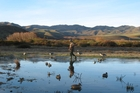 Duck Hunting season is upon us. Photo / supplied