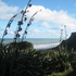Castaways has views out across rugged Karioitahi Beach in Waiuku. Photo / Charlotte Jenkin