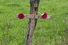 POIGNANT: A cross erected at the site of a car crash, where Laura Jessop, 19, who was injured in a car crash on the Masterton Castlepoint Rd and later died in hospital. PHOTO/LYNDA FERINGA