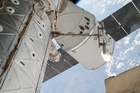 The vegetable growing system was delivered by the SpaceX Dragon spacecraft. Photo / AP