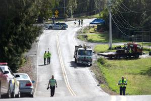 The crash scene on the Coatesville Riverhead Highway. Photo / Richard Robinson