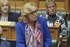 Justice Minister Judith Collins in the House today. Photo / Parliament TV