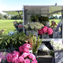 PICK... fresh flowers for Mother's Day from Carole Bowden's flower van on shore Rd in Remuera. Picture / Greta Kenyon.