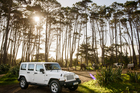 Off the beaten track the Wrangler Unlimited Overland will do almost anything you ask of it. Picture / Ted Baghurst