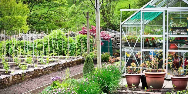 When you have become a real vegetable enthusiast, you'll need a glass house, compost bins, herb pots and a garden shed.
