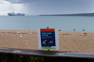 Auckland Council says Mission Bay is the only Auckland beach that has tested unsafe for swimming. Photo / Brett Phibbs