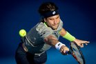 Defending champion David Ferrer was knocked out of the semifinals of the Heineken Open by Yen-Hsun Lu. Photo / Sarah Ivey