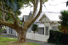 Grey Lynn is full of pretty and popular villas. Photo / Michael Craig