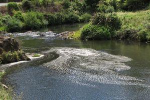 Ohinemuri River.
