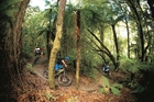 Riders descend a track in the Whakarewarewa Forest. Bike parks are among six projects to receive new government funding through its Tourism Growth Partnership Scheme. Photo / Damian Breach