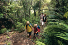 Many children are unimpressed by bush walks.