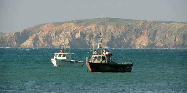 Fishing boats on the water at the Chatham Islands. Photo / Herald on Sunday
