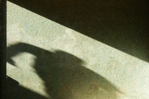 Police want help to identify a young boy they believe has been responsible for five indecent assaults in the Auckland suburb of Papakura. Photo / Thinkstock