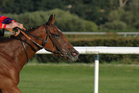 River Lad outlasted Benny's Buttons to win the group three race by a long head. Photo / Thinkstock