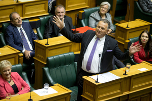 Labour MP Shane Jones during his valedictory speech in Parliament. Photo / Mark Mitchell