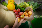 A number of providers offer weekly or fortnightly delivery of fruit and vegetable boxes, often on a subscription-style basis. Photo / Adrian Malloch
