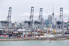 Ports of Auckland chief executive Tony Gibson said the company was starting to reap the benefits of a reorganisation plan started in 2011. Photo / Richard Robinson