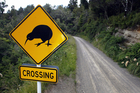 KiwiSaver jargon can be a tough road to navigate. Photo/ Steven McNicholl.
