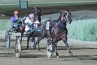 Race 9, Tabcorp Park, Saturday15-3-2014 Mittys Youthful Stakes (2YO colts & geldings) Winner: Padrisimo (10) Trainer: Andy Gath; Driver: Kate Gath Race Distance: 1,720 metres