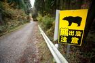 A sign reading 'Beware - bear haunt' on a Hokkaido forest  trail. Photo / Daisuke Kondo