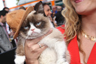 Grumpy Cat arrives at the MTV Movie Awards. Photo / AP