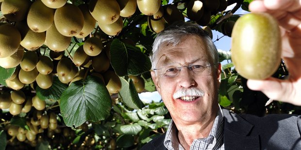 Neil Trebilco, president of NZ Kiwifruit Growers, says realising the Gold3 variety was Psa-resistant was a turning point for the industry.