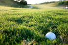 About 400,000 thousand US golfers people left the sport last year. Photo / Thinkstock
