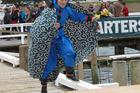 Japanese TV presenter Ayako Imoto bolts down the wharf as a flying Ninja. Russell Birdman Festival 2013