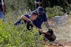 British policemen dig top soil with a shovel while searching for Madeleine McCann. Photo / AP