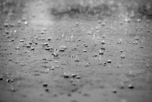 Light showers for Auckland, South Island's West Coast to get a longer spell of rain. Photo / File