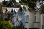 The main domestic risk is house prices overshooting followed by a sharp fall. Photo / APN