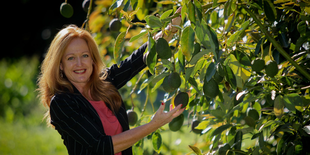 NZ Avocado Growers' Association chief executive Jen Scoular.