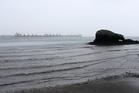Reotahi looking towards NZRC Mardsen Point. PICTURE/Michael Cunningham