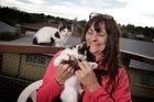Mary Lou Nation found new homes for 65 kittens and seven cats in five months. Picture / APN