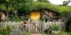 Hobbit holes from the movie set of 'The Hobbit' in Matamata. Photo / Christine Cornege