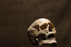 New research on 17 skulls from a collection of 430,000-year-old remains found. Photo / Thinkstock