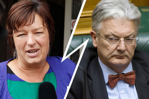 Labour MP Sue Moroney and United Future leader Peter Dunne. File photo / NZ Herald