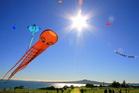 Kites flying at the Matariki Kite day.